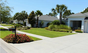 summer landscaping care in florida