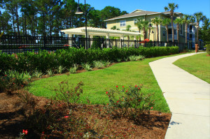 commercial landscape maintenance Florida