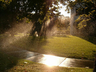 wet sidewalks are a sign of faulty commercial landscape irrigation