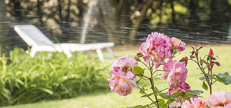 Adjust Your Irrigation Schedule as You Adjust Winter Lawn Care