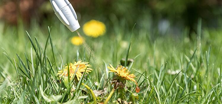Using Selective Herbicides to Control Weeds