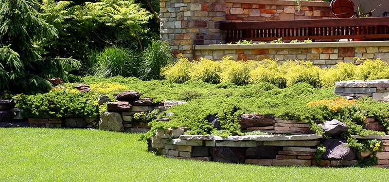 Summer Landscaping caring for your florida landscape in the heat of the summer