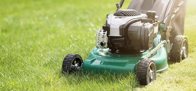 It is a myth that cutting grass shorter means you won't have to mow as often