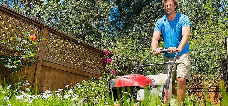 Hire a Professional Lawn Service rather than doing it yourself