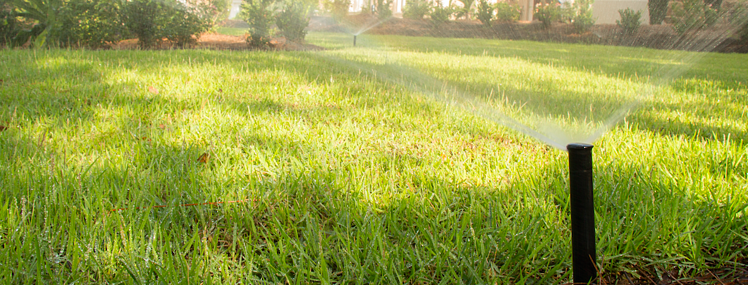 using one landscaping company for various maintenance needs can be coordinated for the best interest of your property