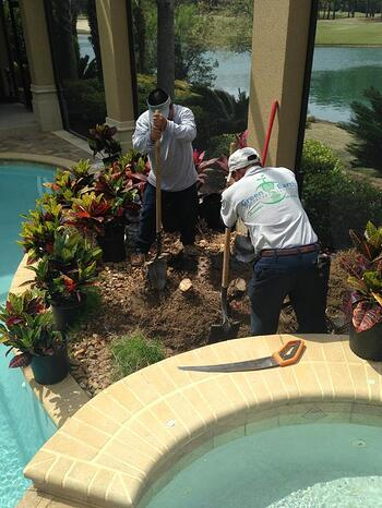 GreenEarth Landscape Services' crews will work hard for you!