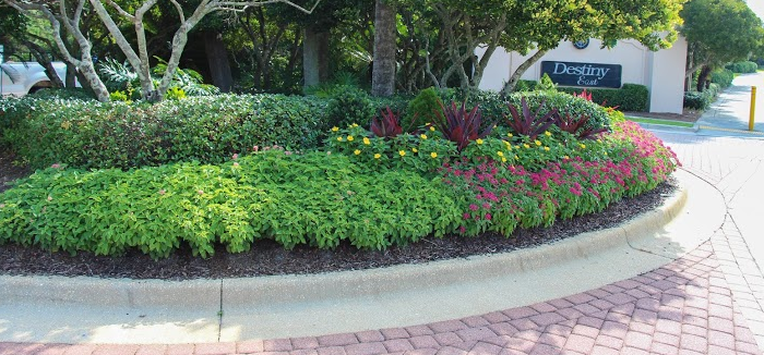 landscape plantings of varying height are a good plan for driveways leading up to commercial properties