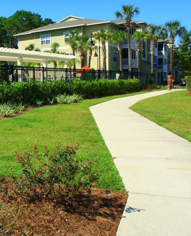 Panama City Beach, Santa Rosa Beach and Destin Landscaping ...