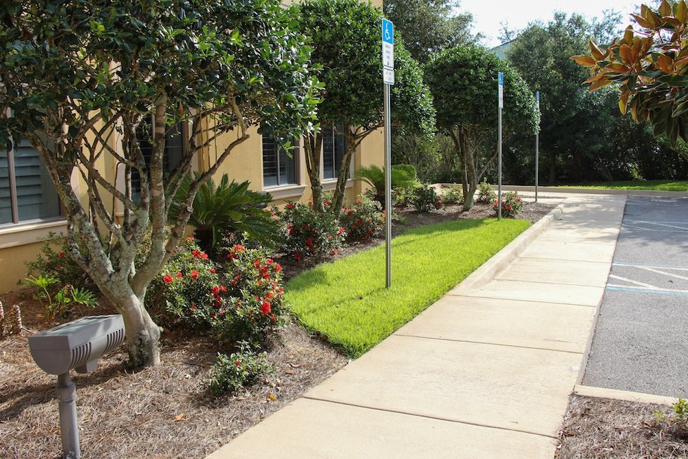 commercial landscaping florida